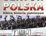 Polski sektor